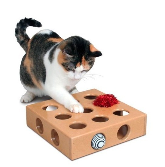 Best Cat Toys Amazon