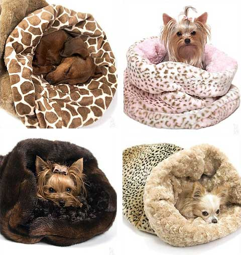 Best Dog Beds For Small Dogs