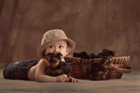 Best Dog For Kids 2013