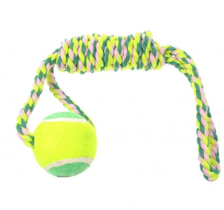 Best Dog Toys For Puppies