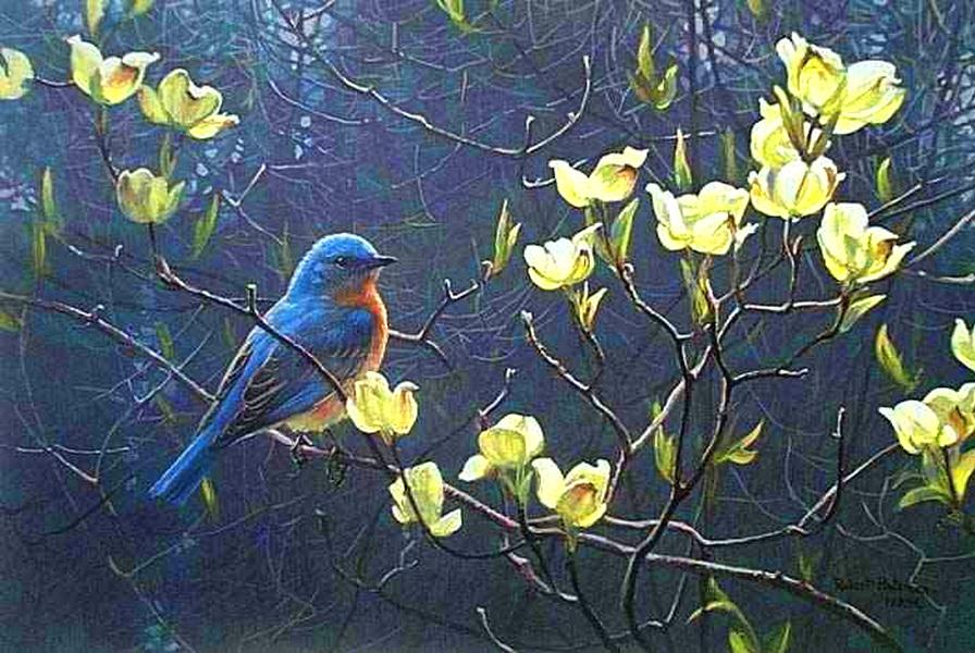 Birds & Blooms Wallpaper