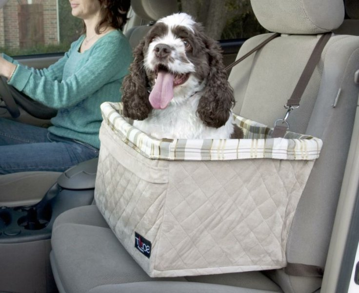 Car Seat Covers For Dogs South Africa