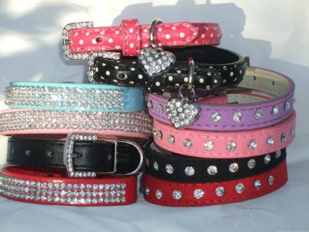 Chihuahua Bling Dog Collars