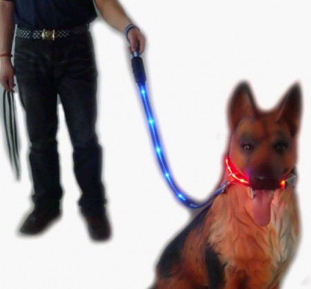 Cool Dog Collars And Leashes