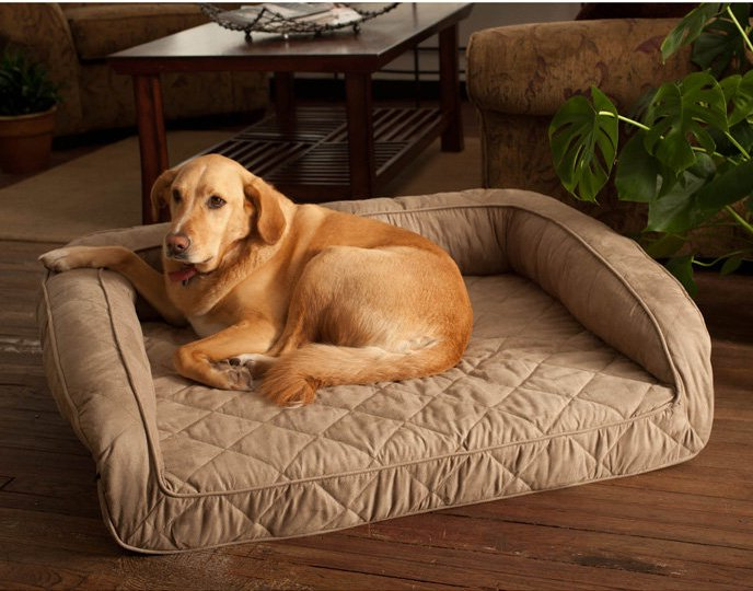 Coolaroo Dog Bed Extra Large