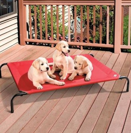 Coolaroo Dog Bed Large