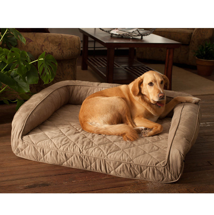 Costco Memory Foam Dog Bed