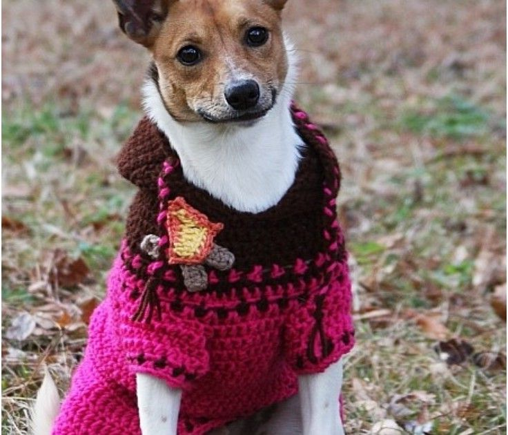 Crochet Dog Sweater Pattern Small Dogs
