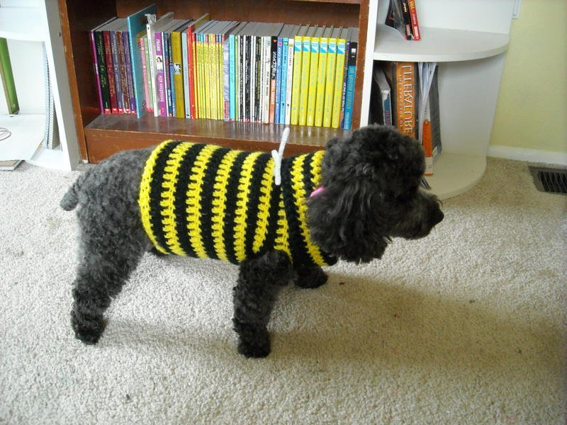 Crochet Dog Sweater Patterns
