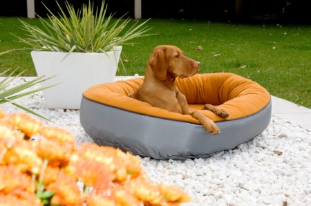 Cute Dog Beds For Large Dogs