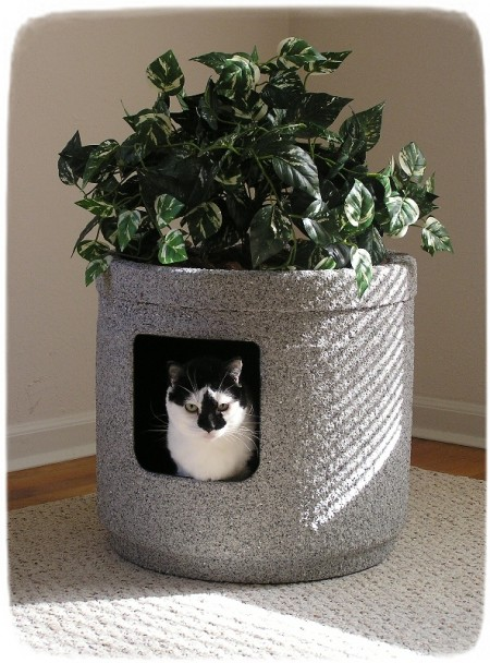 Decorative Cat Litter Box Furniture