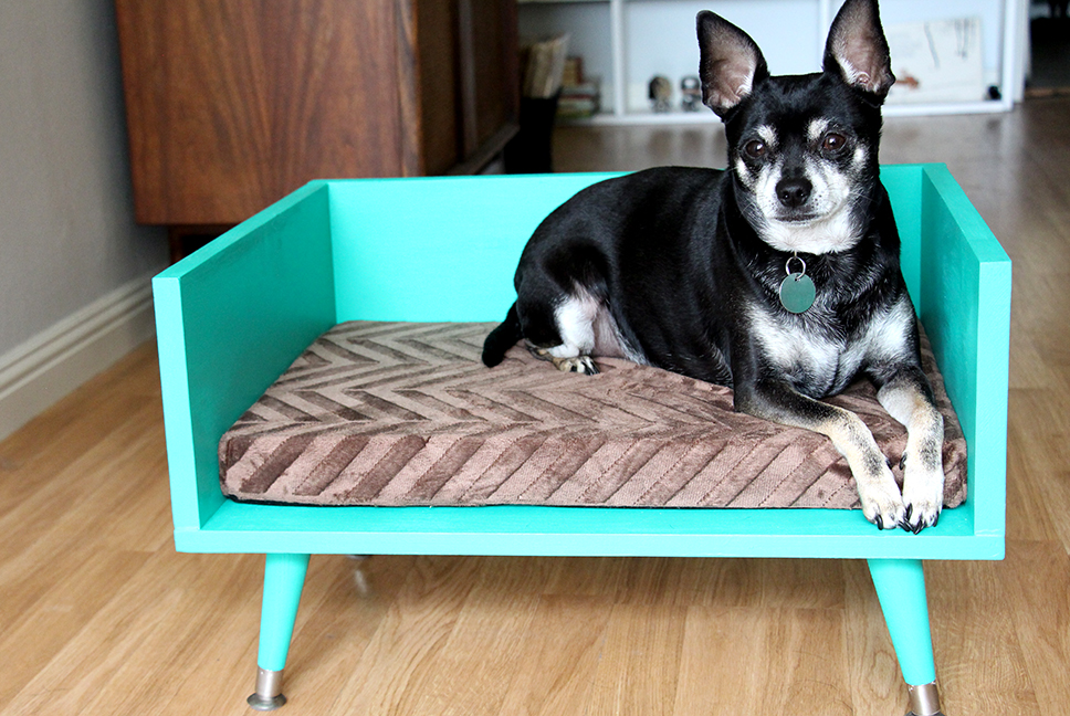 Diy Large Dog Beds