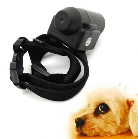 Dog Bark Collar Spray