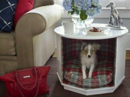Dog Litter Box Ideas