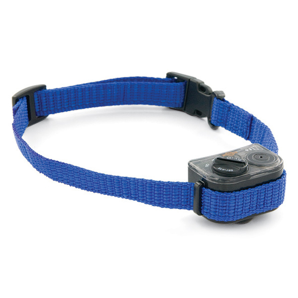 Dog Shock Collars Petsmart