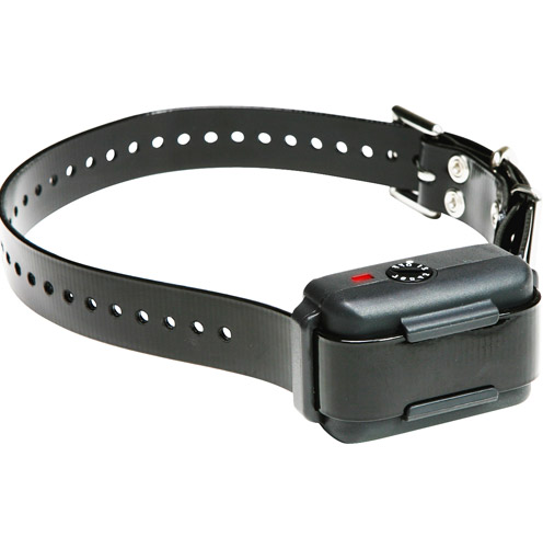 Dog Shock Collars Walmart