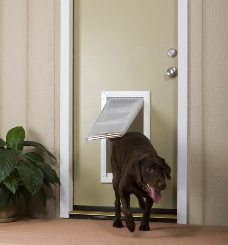 Electronic Dog Door Large