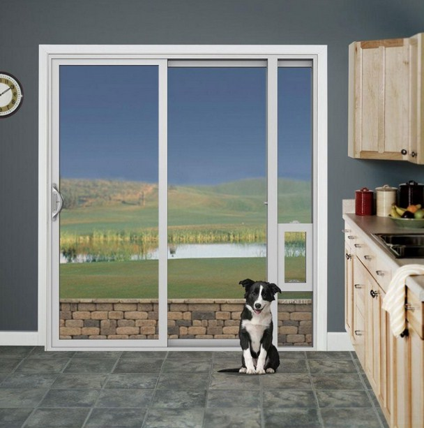 Electronic Dog Door Sliding Glass