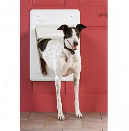 Electronic Dog Door Wall