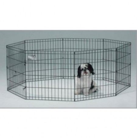 Electronic Dog Fence Amazon