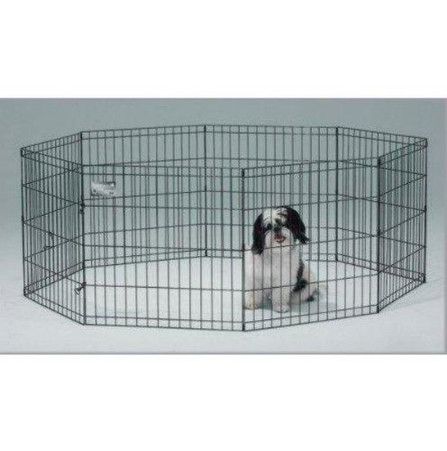 Electronic Dog Fence Amazon