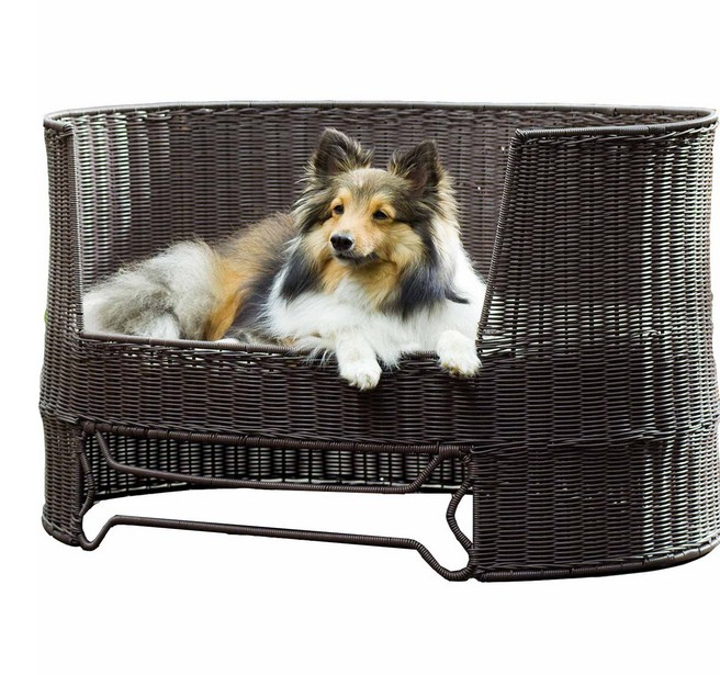 Elevated Dog Bed For Large Dogs