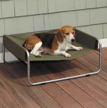 Elevated Outdoor Dog Bed