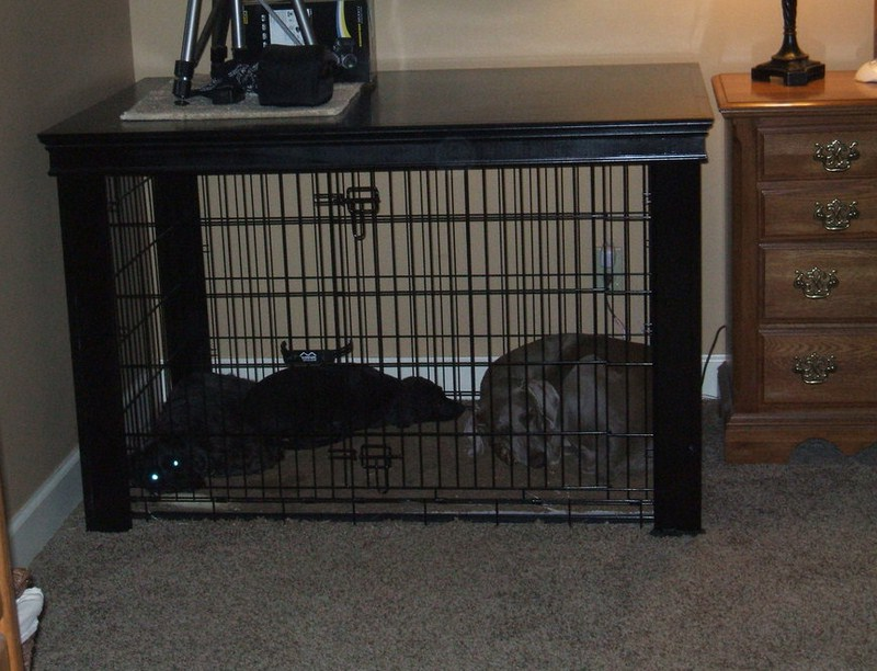 Extra Large Dog Crate Walmart