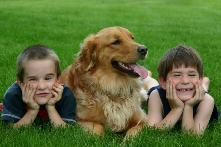 Good Dogs For Kids Small