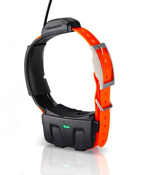 Gps Dog Collar Iphone
