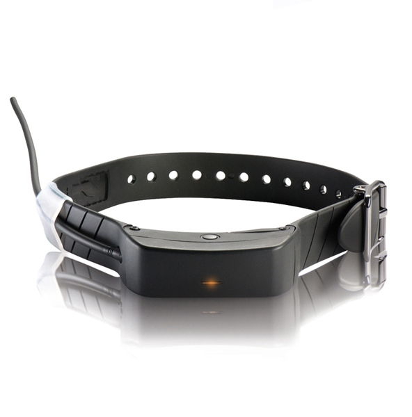 Gps Dog Collar Smartphone