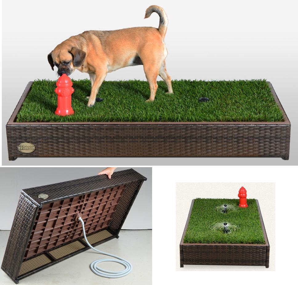 Indoor Dog Litter Box