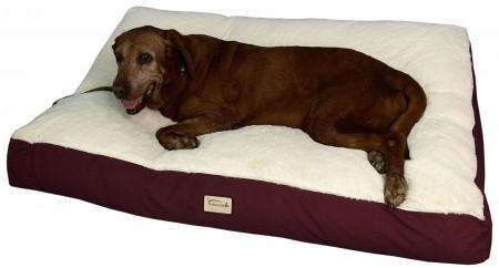 Kong Dog Bed Filler