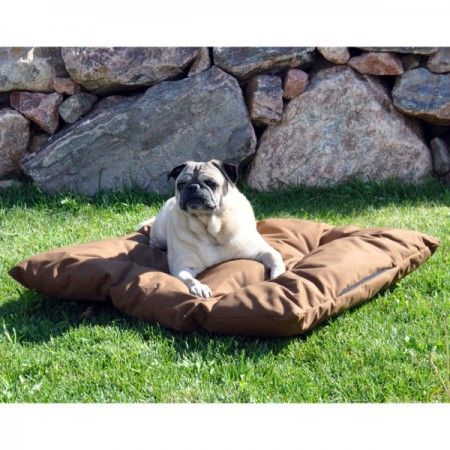 Kong Dog Bed Petsmart