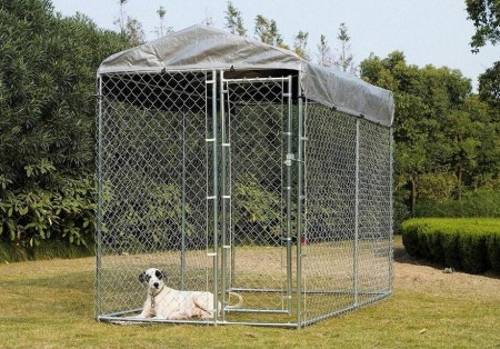 Large Chain Link Dog Kennels