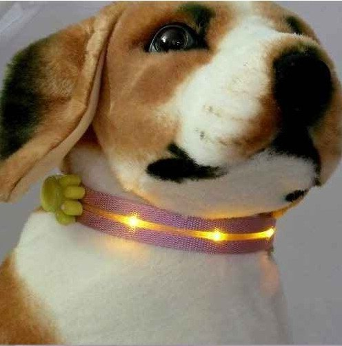 Lighted Dog Collars And Leashes
