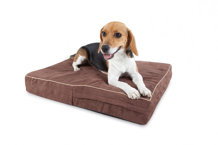 Memory Foam Dog Bed Australia