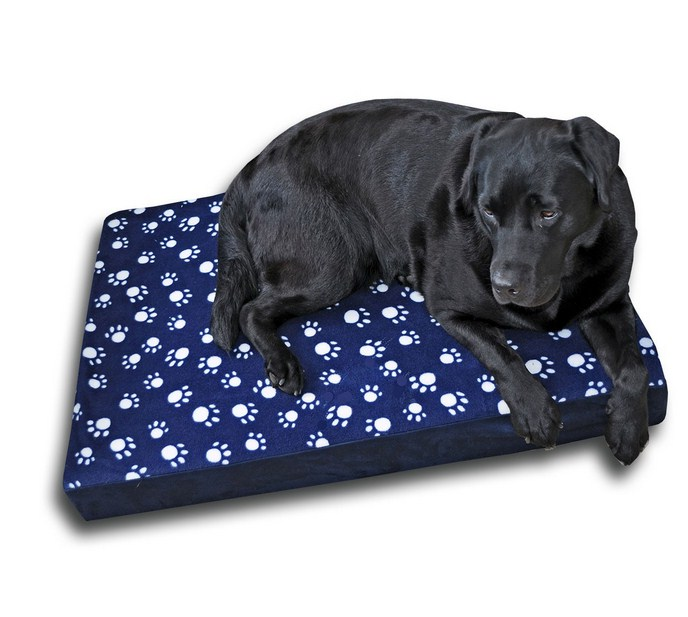 Memory Foam Dog Bed Uk