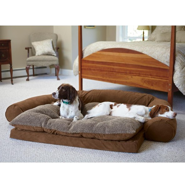 Orthopedic Dog Bed Uk