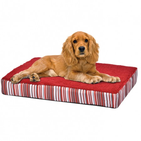 Orthopedic Dog Beds For Large Breeds