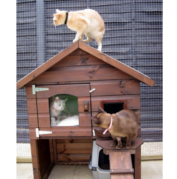 Outdoor Cat House For 2 Cats