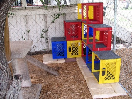 Outdoor Cat House Ideas