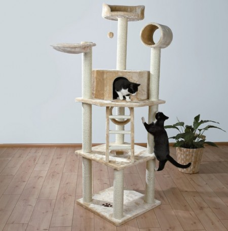 Outdoor Cat House Uk