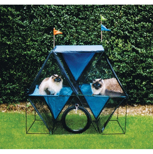Outdoor Cat Houses For Multiple Cats