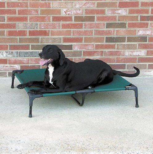 Outdoor Dog Bed Amazon