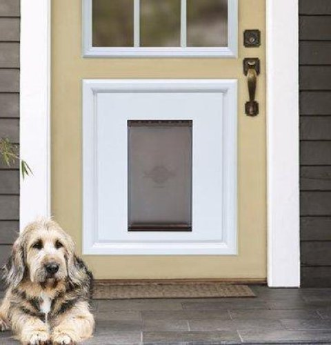 Petsafe Dog Door Large