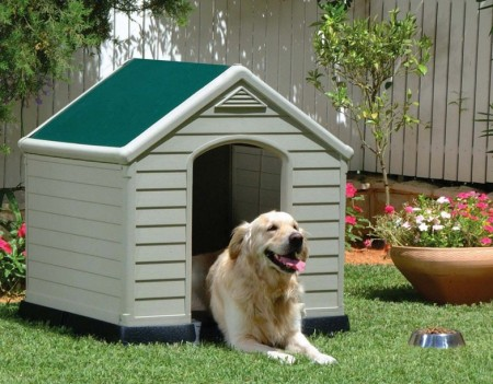Picture Of A Dog House