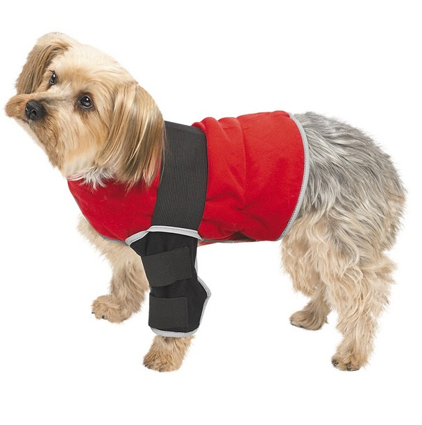 Therapy Dog Vest Amazon