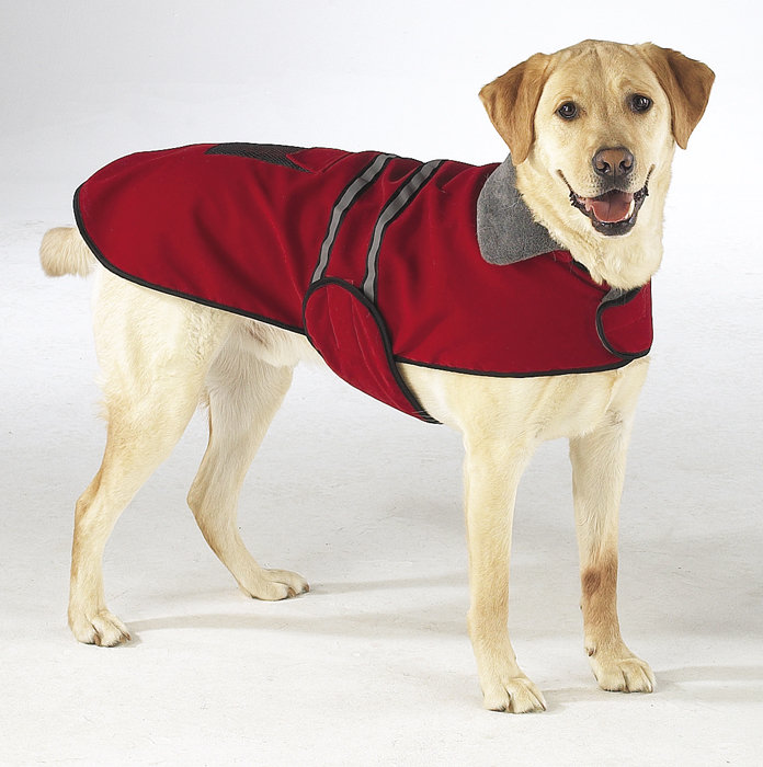 Thunder Jacket For Dogs Ebay