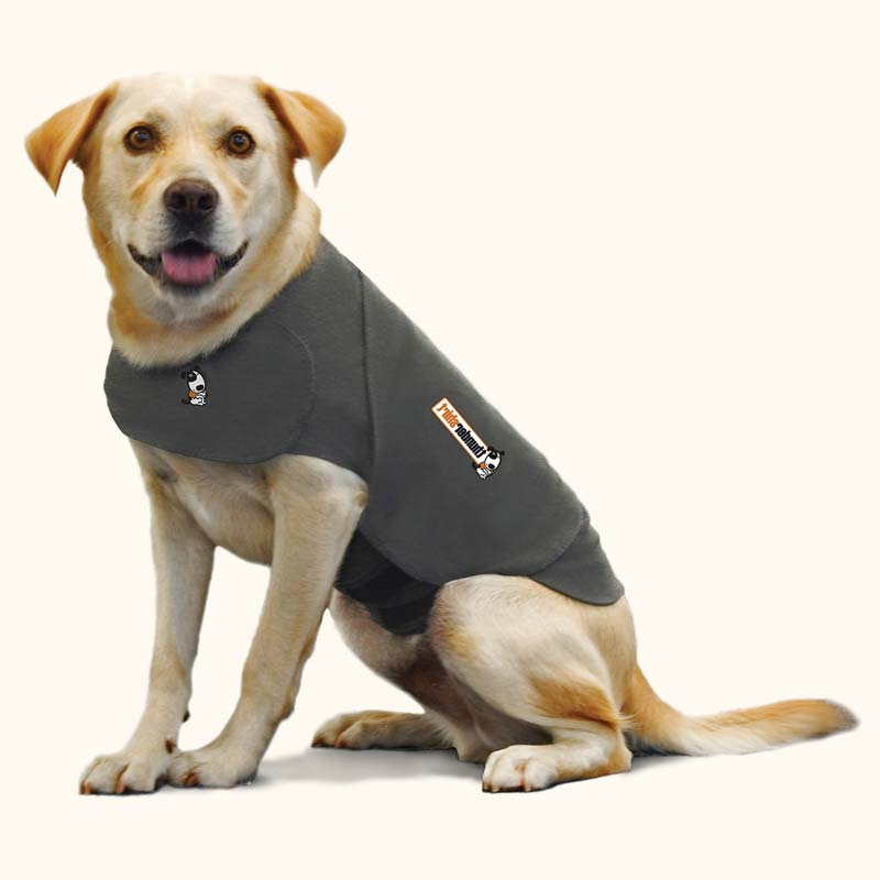 Thunder Jacket For Dogs Petsmart